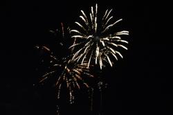Célébration du 14 juillet 2014