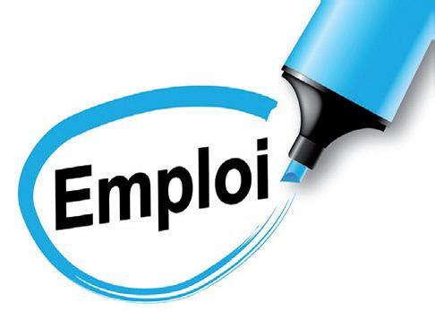 emploi-logo