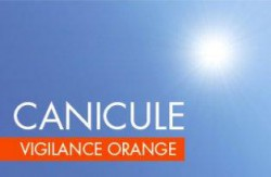 logo canicule orange